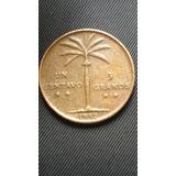 Bellesimas Moneda De Palmita