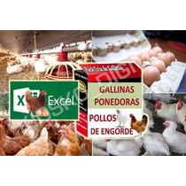 Proyecto Cría Gallinas Ponedoras Pollo Engorde Huevos Excel