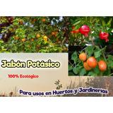 Jabon Potásico Ecológico