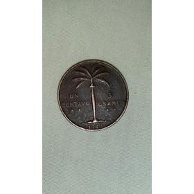 Un Chele De Palmita