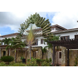 Hermoso Townhouse En La Estancia Golf&resort