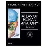 Atlas De Anatomía Humana Netter 6ª Edición Pdf