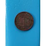 Moneda Un Centavo Dominicana Palmita 1952,53,59