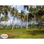 Terreno Con Playa De Venta En Samaná, Republica Dominicana.